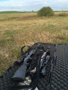 Осенняя охота в охотхозяйстве